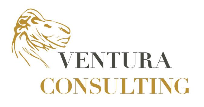 Ventura_Consulting